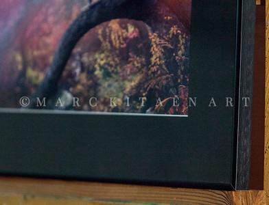 """""""LEOPARD OF SPLENDORA""""  / On Sale Price: $125.00 / Metal Frame / 18"""" in. X 24"""" in."""