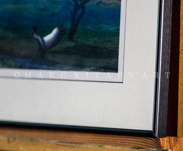 """WEST AFRICAN CRANES"" / On Sale Price: $140.00 / Metal Frame"