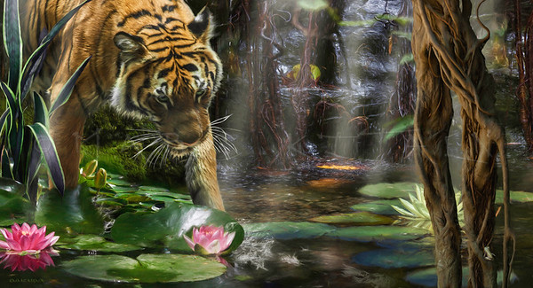 TIGERS NEED WILD PEACE Sumatra Tiger