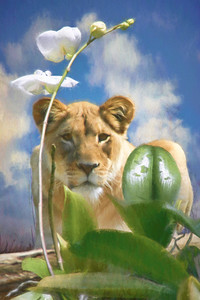 LIONESS AND THE ORCHID