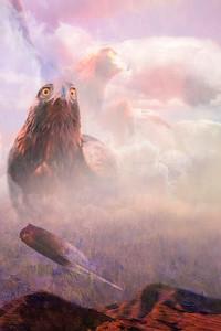 Dianah's Home / Golden Eagle