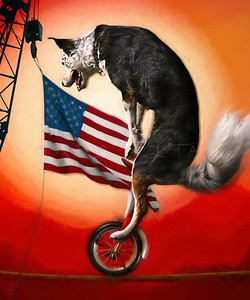 FEARLESS USA CATTLE DOG