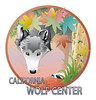 WOLF CIRCLE LEAFS 2