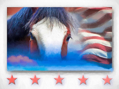 AMERICAN FLAG CLYDESDALE
