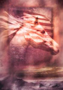 WILD HORSE SPIRIT OF FREEDOM
