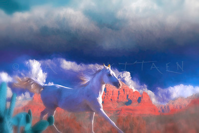 Wind of the South  (arabian horse)