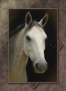 ARABIAN HORSE TRIANGLES PORTRAIT