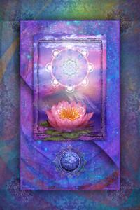 Himalayan Lotus Slendor