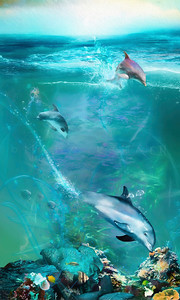 """DOLPHIN DIVERS"" (pano/vertical)"