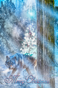 """SEASON OF THE WOLF"" / Merry Christmas"