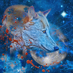 SIRIUS ALPHA WAVES WOLF (square version)