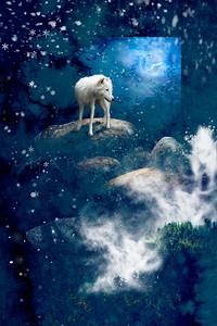 MOON STRIDER ARCTIC WOLF