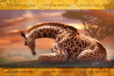 GIRAFFE BABY OF AFRICA