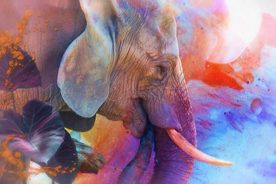 ELEPHANT REMEMBERING SACRED WATERS