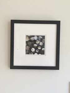 Private Collection Sydney : Sunspots, photograph 2013