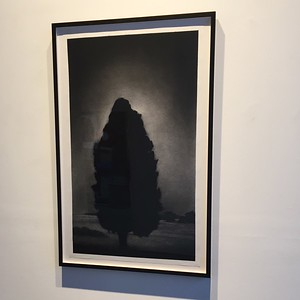 Illumination, charcoal on paper Framed 121.5 x 78.4cm $6,500.