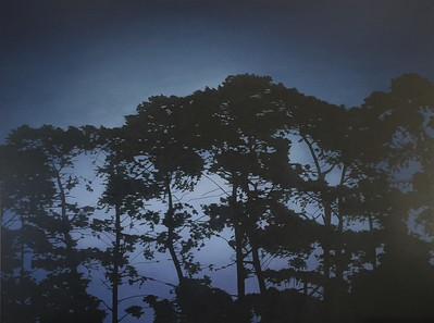 Pines at Twilight, oil on linen 137 x183cm 2017 $16,500 AUD