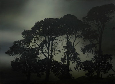 Night Pines 1, oil on linen 112 x 152cm $10,500
