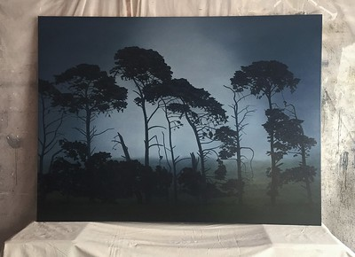 Fenceline Pines 112 x 152cm SOLD