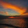 JRC_Aruba_2012_9-28 to 10-5_0362