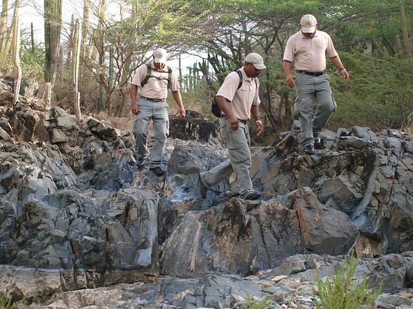 Biodiversity Day 2012 in Arikok National Park