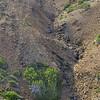 Aerial view of erosion on Aruba