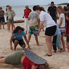 Nature Education workshop, Aruba (November 2011)