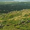 Cero Arikok Hill, Parke Nacional Arikok