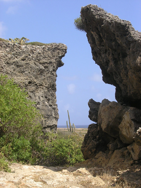 Aruba Photos - Duncan MacRae