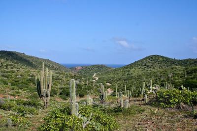 Aruba 1-2007 428