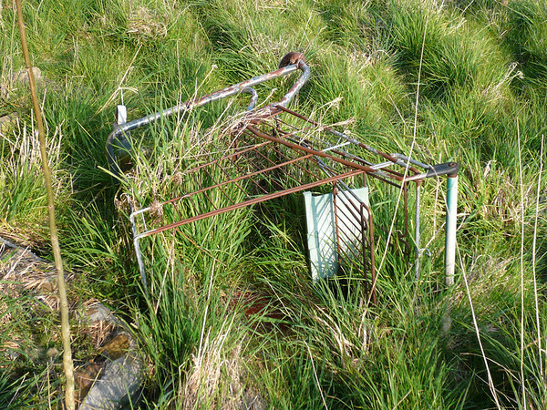 Abandoned trolley
