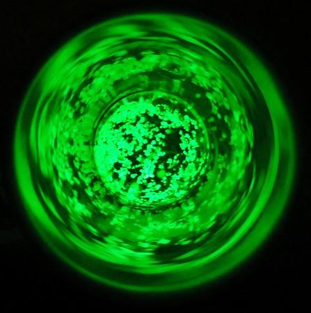 NMR-IMG_2704 (2) glowing sphere inside vase