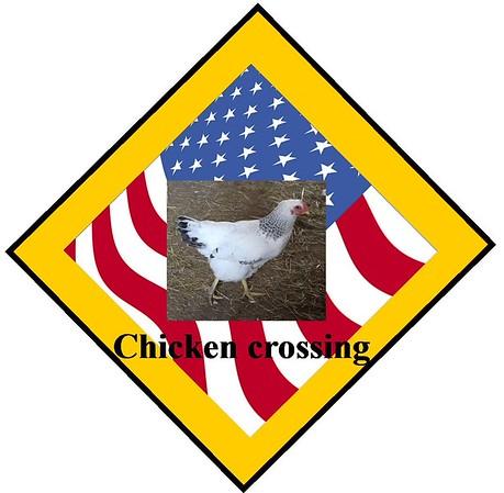 2015 3 30 Chicken crossing sign