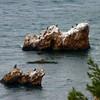 EbruV rocks5