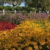 TE   Prescott Gardens