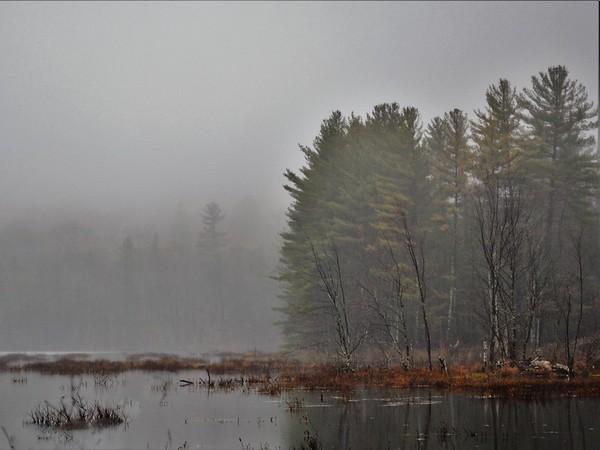 """""""Misty Day"""""""
