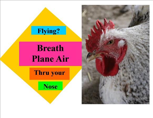 Ash challenge Air Plane 7 1 15
