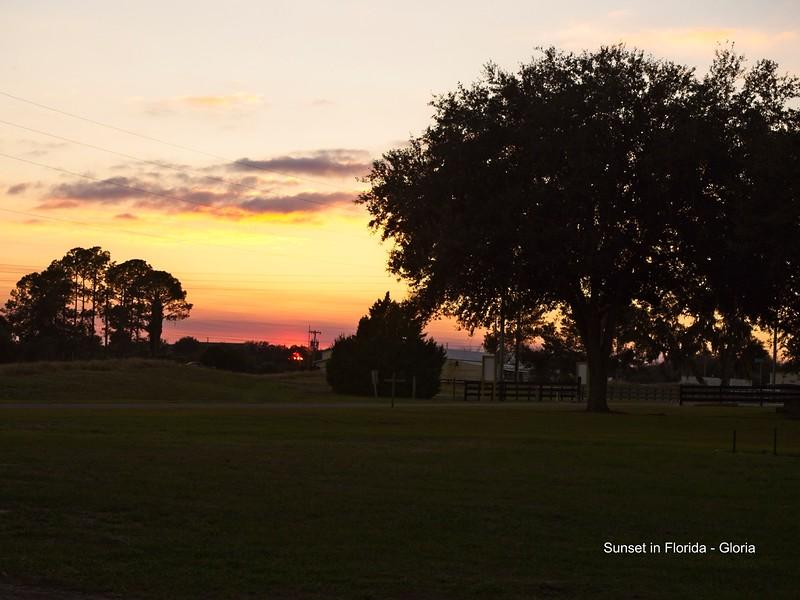 Sunset - GL