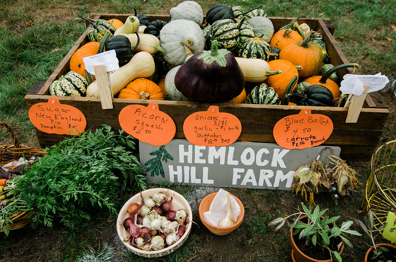 Pumpkins from Hemlock Hill Farm during the Ashby Pumpkin Fest on Saturday afternoon. SENTINEL & ENTERPRISE / Ashley Green