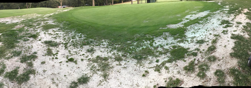 #14 Green Asheville Municipal Golf course