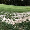 Pope Golf Ruins Asheville Municipal Golf Course