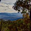 Asheville 10_2015 007 ZSE
