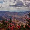 Asheville 014
