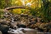 Ashland Creek Autumn