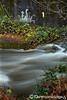 Ashland Creek Cuthulhu