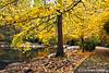 Upper Duck Pond in Autumn