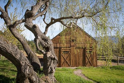 Country Willows front Barn