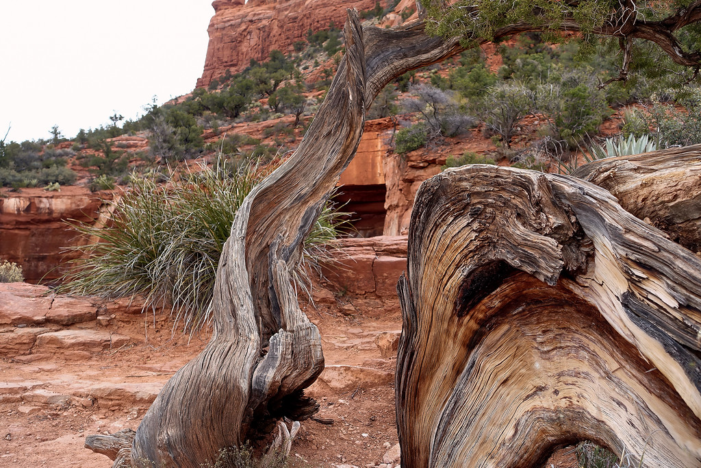 Sink Hole beneath Sphinx Mountain, Sedona, Arizona (c) 2014