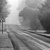 The way to Ashridge (black & white)