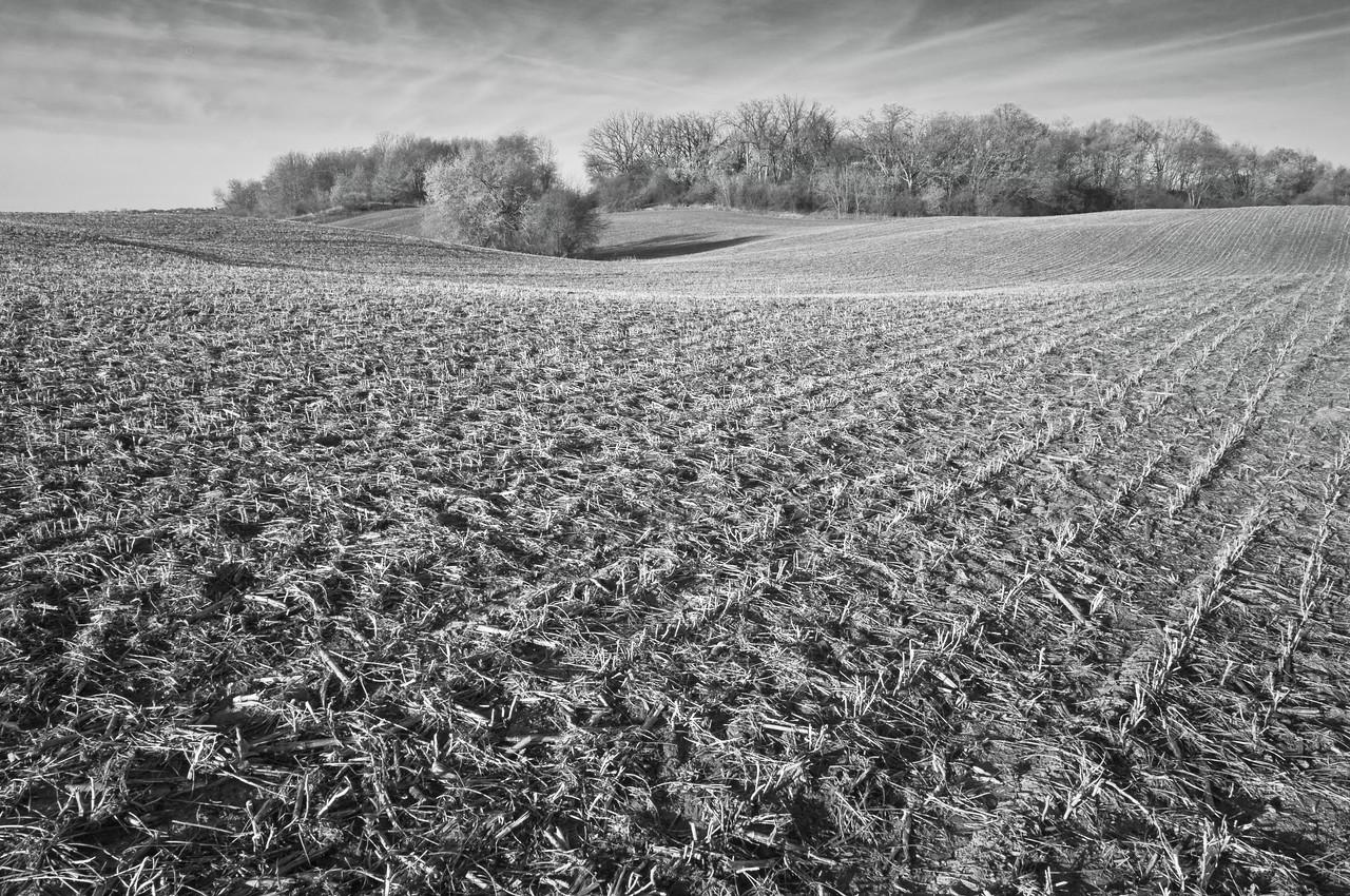 Farm fields - back hills in spring